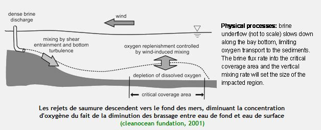 Impacts environnementaux du dessalement d'eau de mer dans H20 capture6